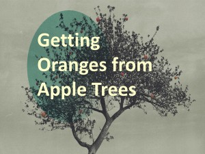 Getting Apples from Orange Trees
