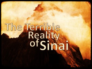 The Terrible reality of sinai