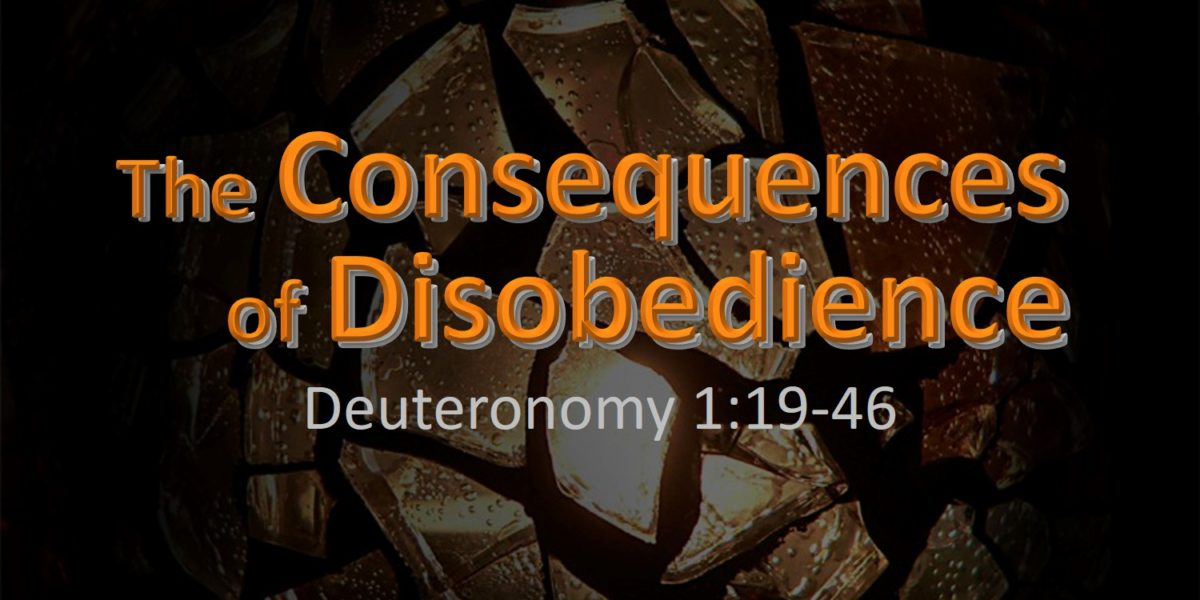 The Consequences of Disobedience (Deuteronomy 1:19-46)